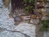pict0030-800x600